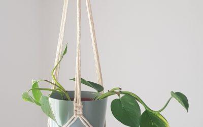 Macramé augalų kabykla